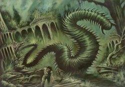 1092_ragworm